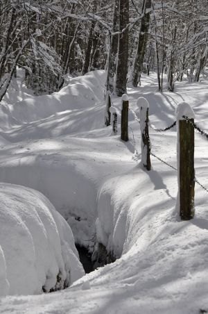 Lamontélarié hiver 2020-4