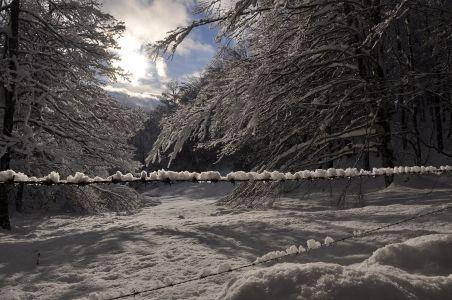 Lamontélarié hiver 2020-1